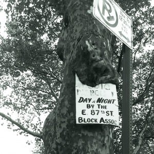 tree consumes open accessible data